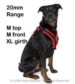 20mm M-M-XL Perfect Fit Harness (74-85cm)