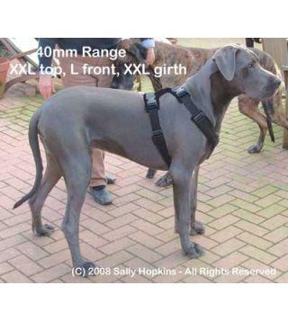 40mm XXL-L-XXL Perfect Fit Harness (96-122cm)