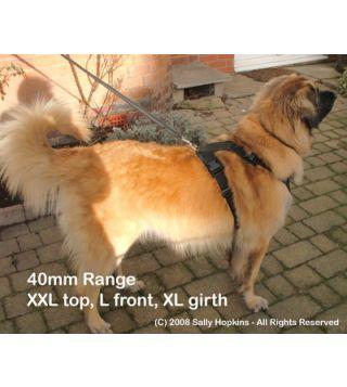 40mm XXL-L-XL Perfect Fit Harness (85-109cm)