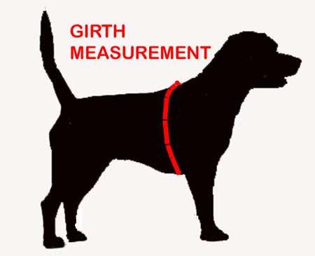 Girth Measurement